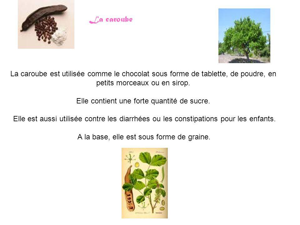 La caroube La caroube est utilisée comme le chocolat sous forme de tablette, de poudre, en petits morceaux ou en sirop. Elle contient une forte quanti
