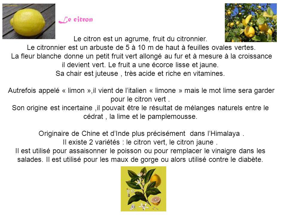 Le citron Le citron est un agrume, fruit du citronnier. Le citronnier est un arbuste de 5 à 10 m de haut à feuilles ovales vertes. La fleur blanche do
