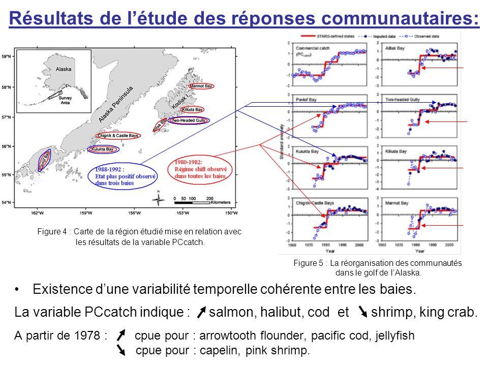 Conclusion: Rejet de l'hypothèse : Le régime shift 1998-1999 à contribué à des changements de l'état des communautés dans le Golf de l'Alaska Evénement 2001: absence de preuve de réponse à une réorganisation géographique d'une communauté.