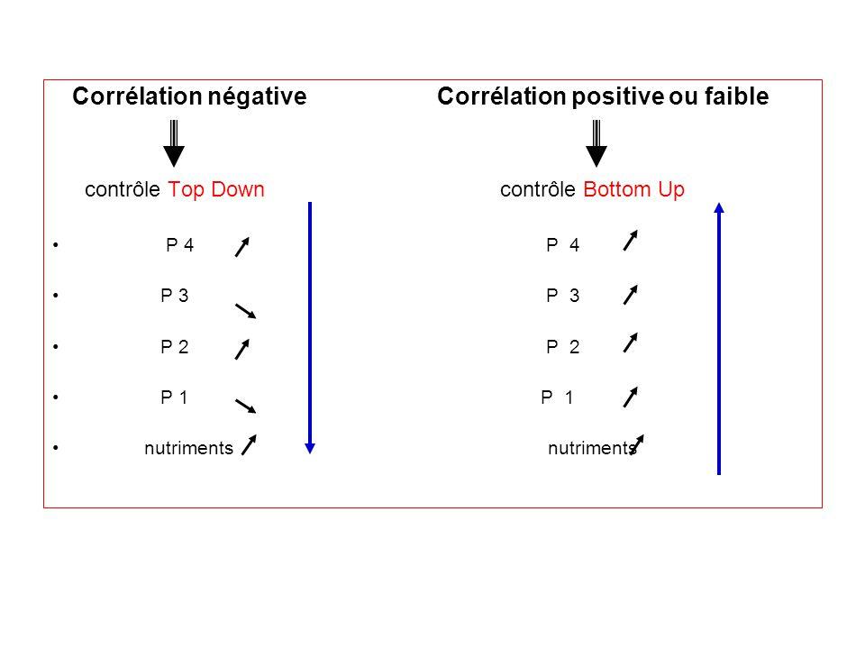 Corrélation négative Corrélation positive ou faible contrôle Top Down contrôle Bottom Up P 4 P 4 P 3 P 3 P 2 P 2 P 1 P 1 nutriments nutriments