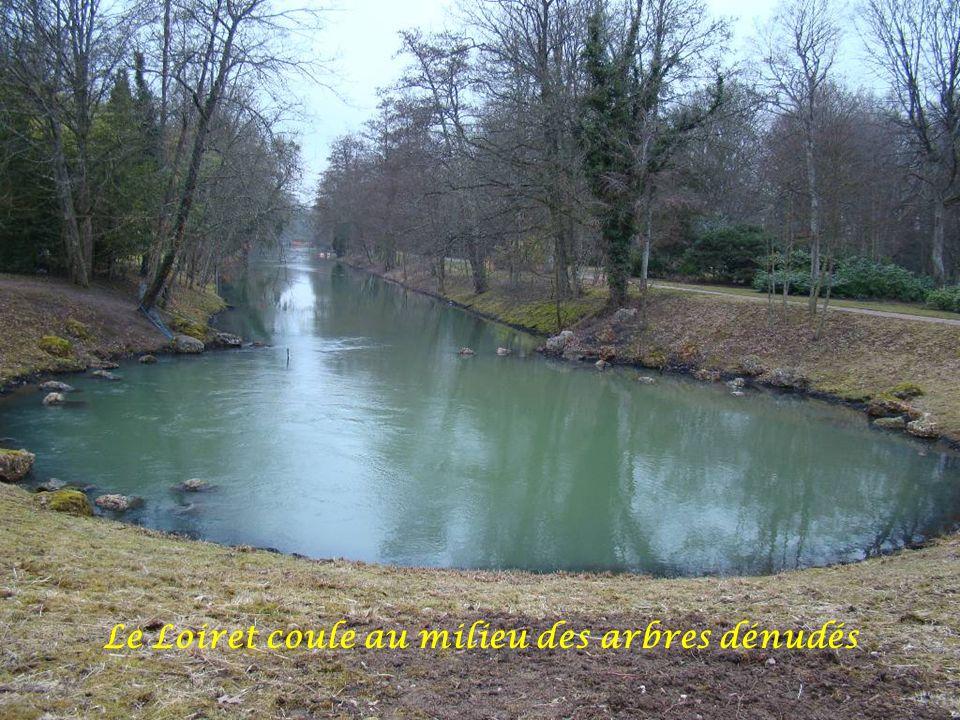18 février 2009 : le Parc Floral d'Orléans paraît triste sans ses fleurs de printemps ou d'été Déroulement automatique
