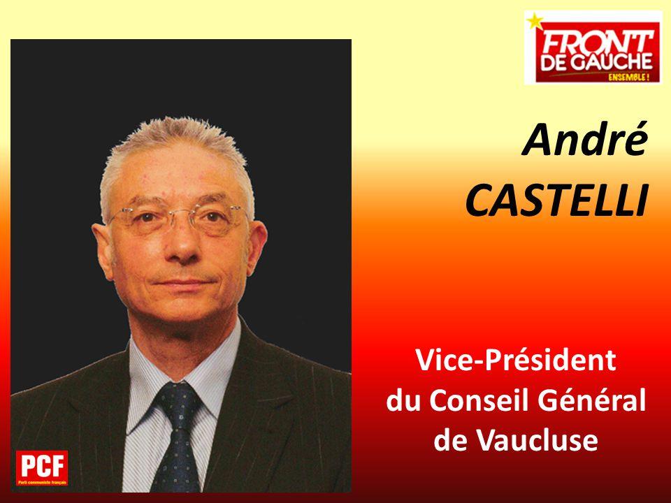 Vice-Président du Conseil Général de Vaucluse André CASTELLI