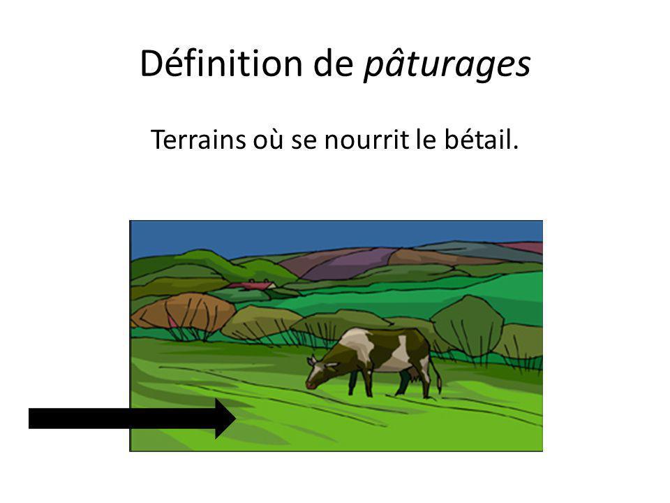 Définition de pâturages Terrains où se nourrit le bétail.