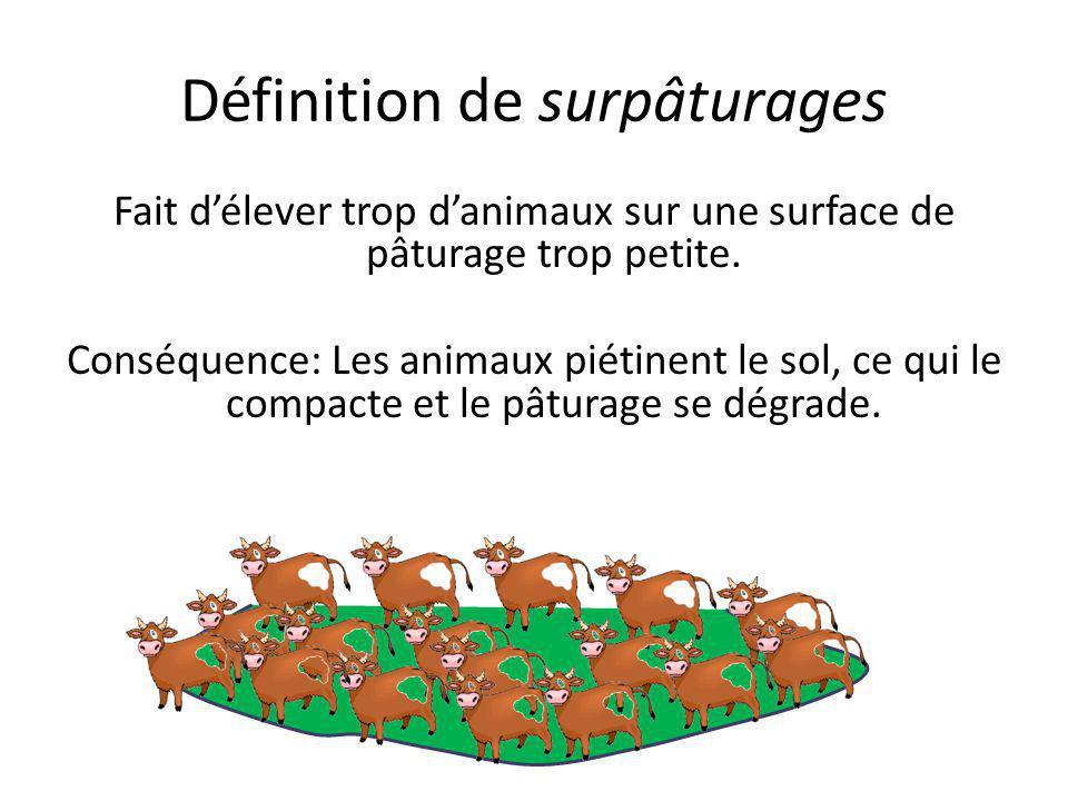 Définition de surpâturages Fait d'élever trop d'animaux sur une surface de pâturage trop petite. Conséquence: Les animaux piétinent le sol, ce qui le