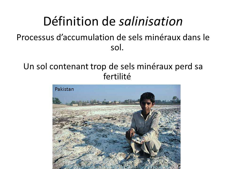 Définition de salinisation Processus d'accumulation de sels minéraux dans le sol. Un sol contenant trop de sels minéraux perd sa fertilité http://www.