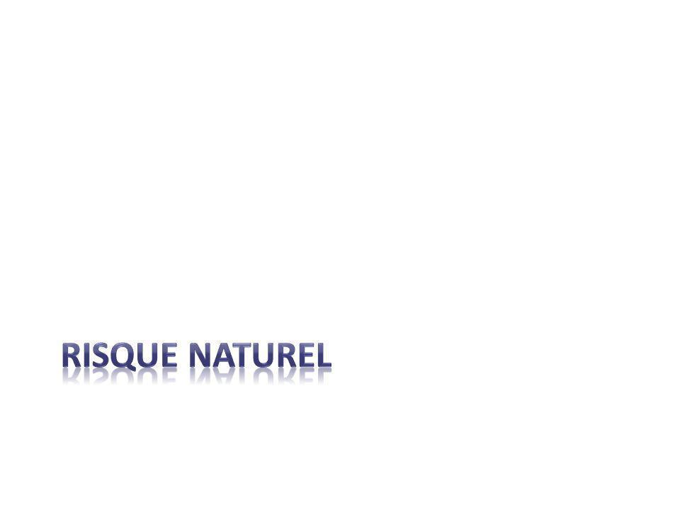 Définition d'un risque naturel Danger d'origine naturelle qui représente une menace pour l'environnement et les habitants.