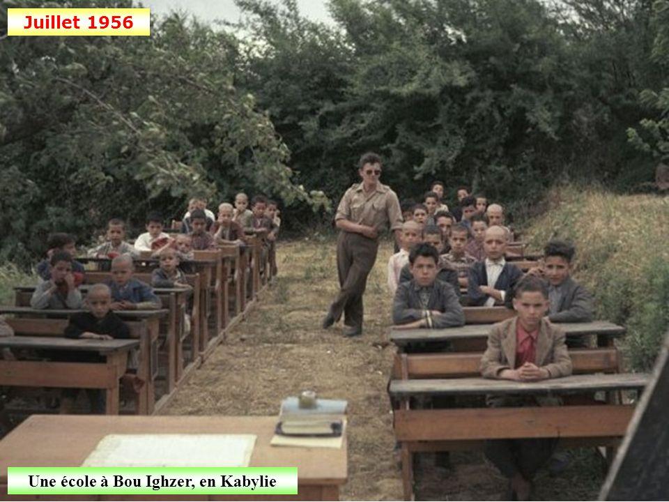 Juin 1956 Protection des moissons dans la région de Constantine