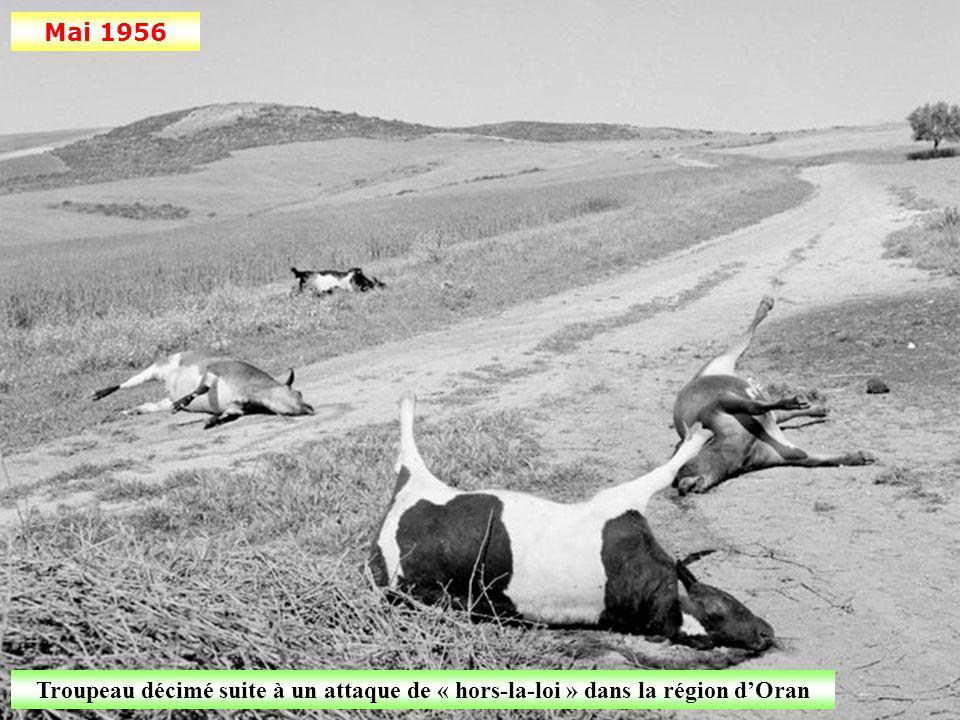Avril 1956 Construction d'une piste