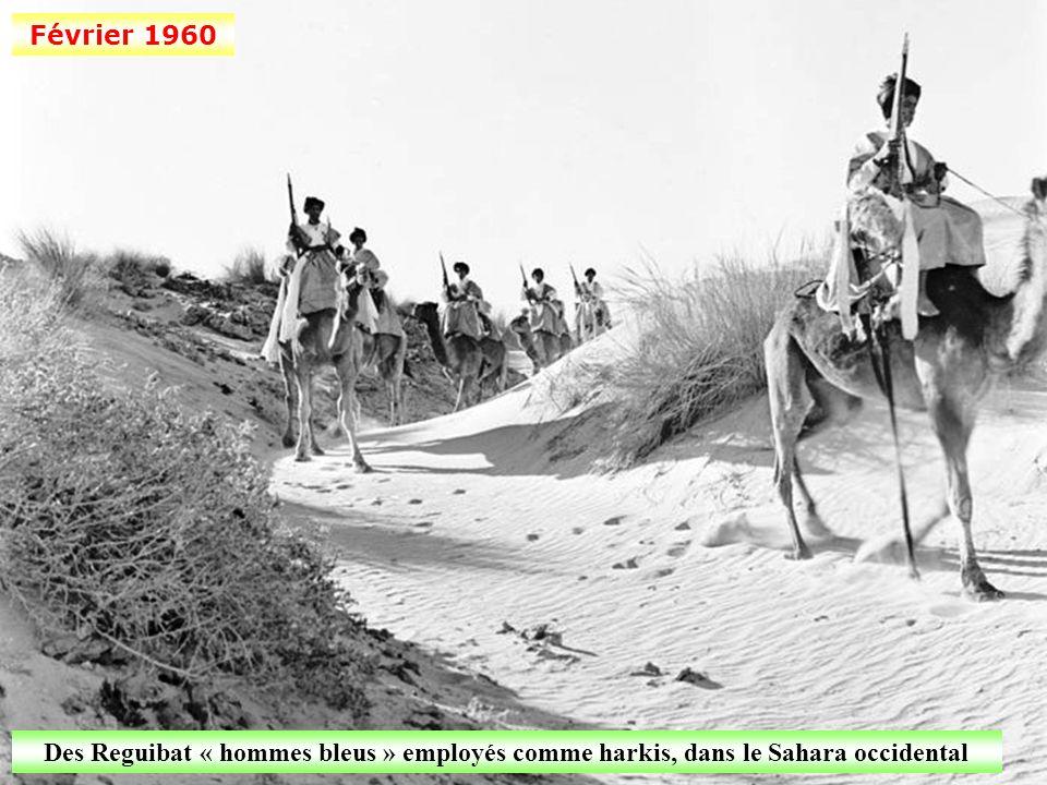 Février 1960 Des harkis nouvellement recrutés s'entraînent au tir dans le Constantinois