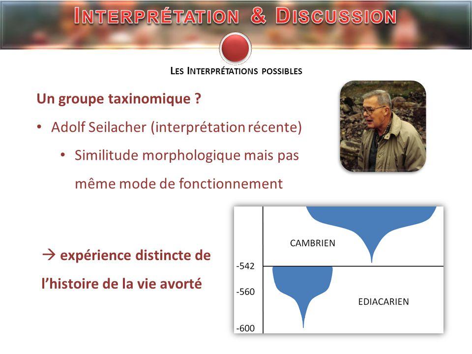 Adolf Seilacher : http://www.envs.emory.edu/faculty/MARTIN/ichnology/IN-Dolf97-1.jpg Bruce Runnegar : http://www.haitzenhitza.com/wordpress/?page_id=81 Fossile Cyclomedusa : http://www.cnrs.fr/.../Precambrien/Zimg/Cyclomed.html Fossile Kimberella : http://www.ucmp.berkeley.edu/vendian/kimberella.jpg Reconstitution Kimberella : evolution.biologique.free.fr/temps/album/Precambrien/Proterozoique I MAGES