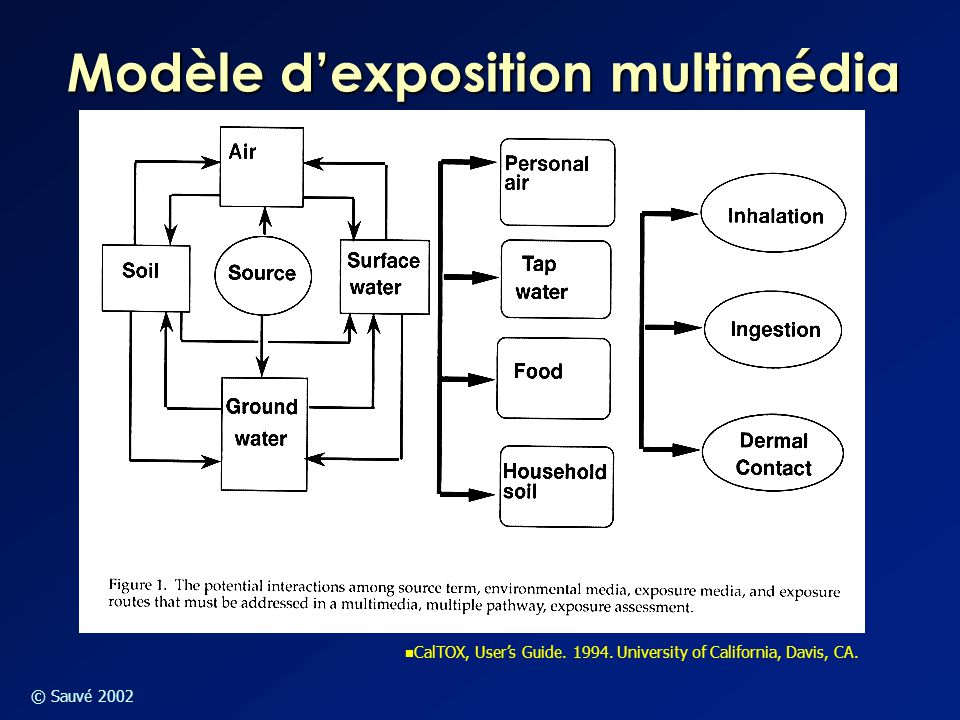 © Sauvé 2002 Modèle d'exposition multimédia CalTOX, User's Guide. 1994. University of California, Davis, CA.