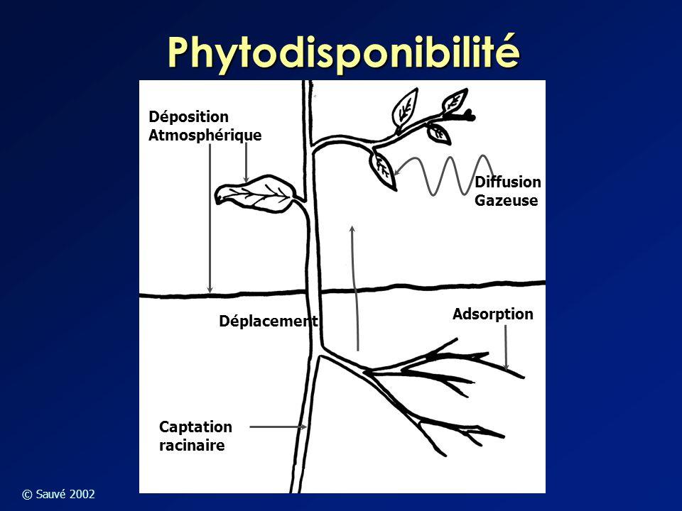© Sauvé 2002 Phytodisponibilité Déposition Atmosphérique Diffusion Gazeuse Captation racinaire Adsorption Déplacement