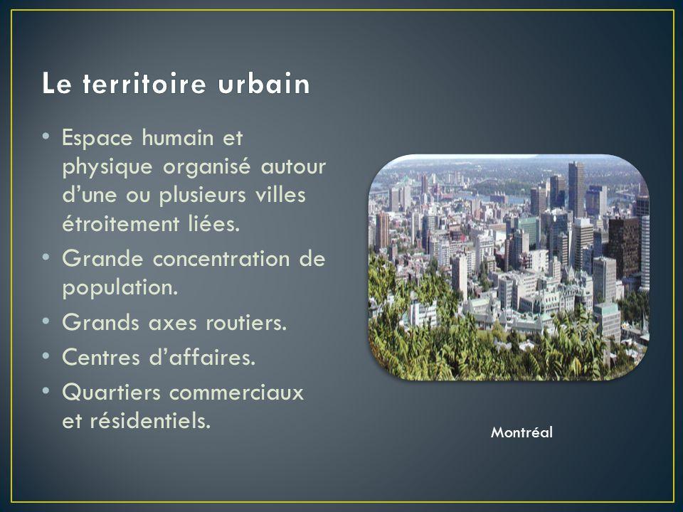 Espace humain et physique organisé autour d'une ou plusieurs villes étroitement liées.