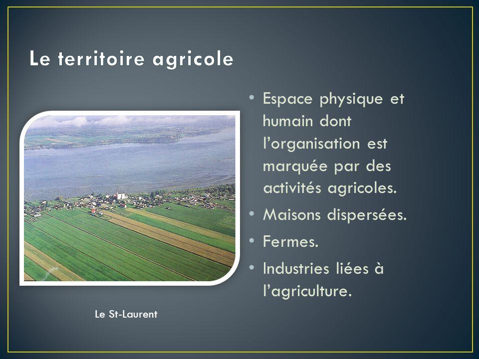 Espace physique et humain dont l'organisation est marquée par des activités agricoles.