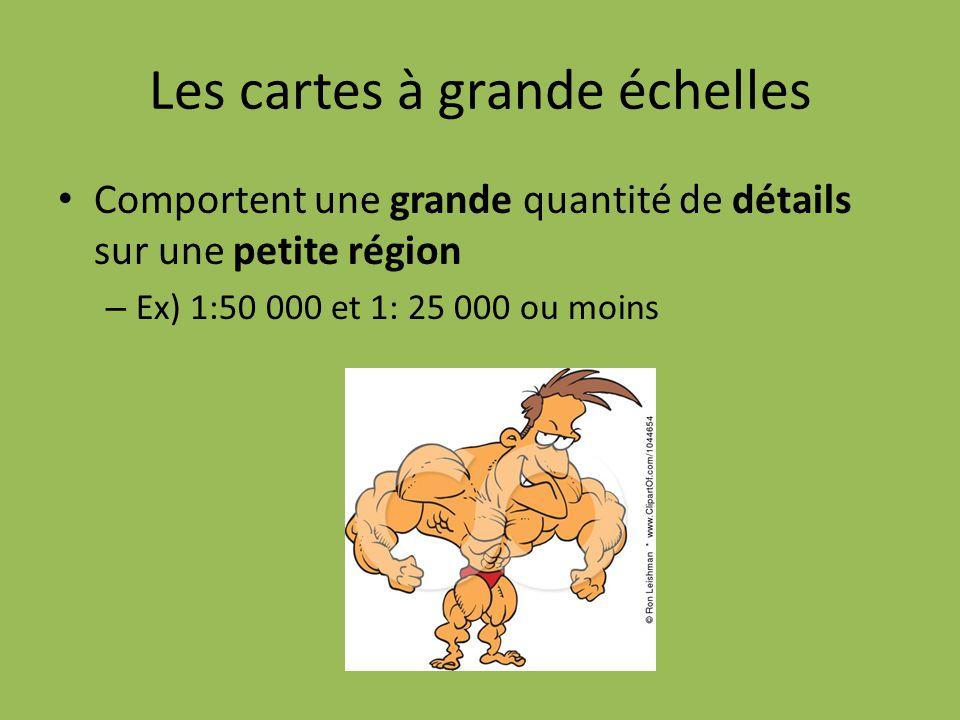 Les cartes à grande échelles Comportent une grande quantité de détails sur une petite région – Ex) 1:50 000 et 1: 25 000 ou moins