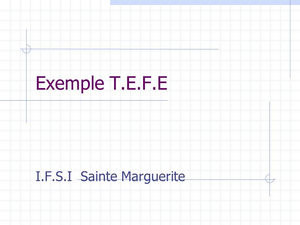 Exemple T.E.F.E I.F.S.I Sainte Marguerite