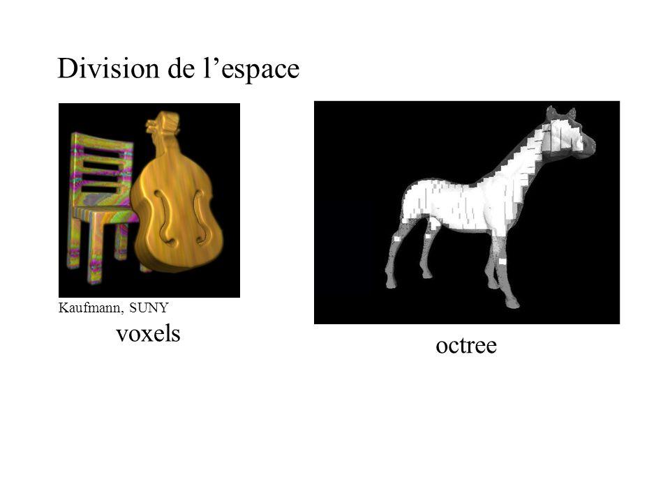 Division de l'espace voxels octree Kaufmann, SUNY