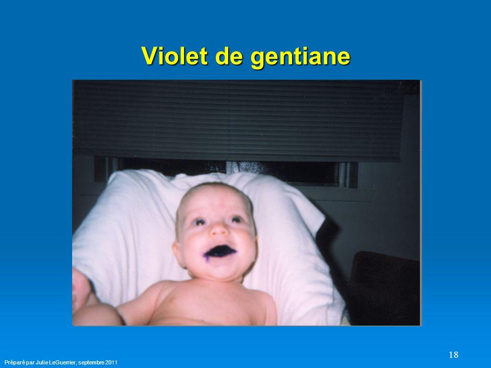 18 Violet de gentiane Préparé par Julie LeGuerrier, septembre 2011