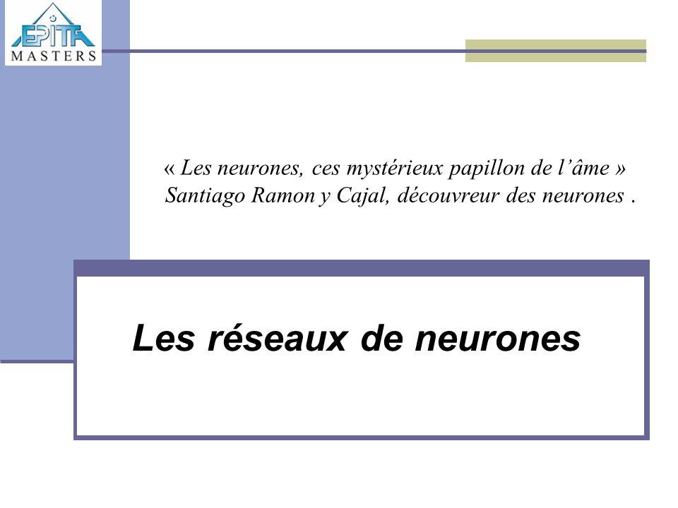 « Les neurones, ces mystérieux papillon de l'âme » Santiago Ramon y Cajal, découvreur des neurones. Les réseaux de neurones