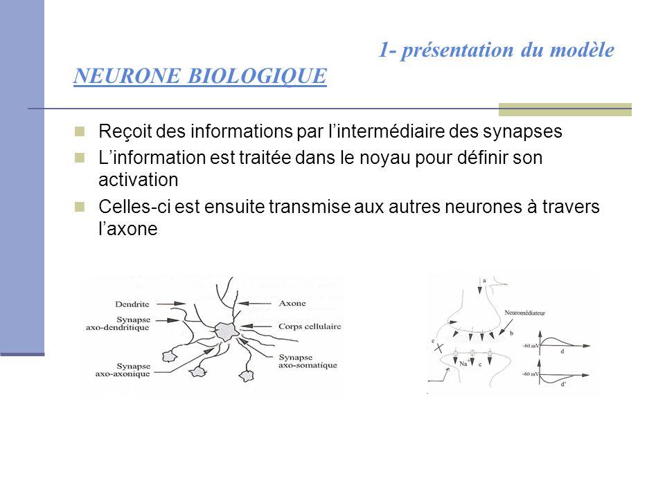 1- présentation du modèle NEURONE BIOLOGIQUE Reçoit des informations par l'intermédiaire des synapses L'information est traitée dans le noyau pour déf