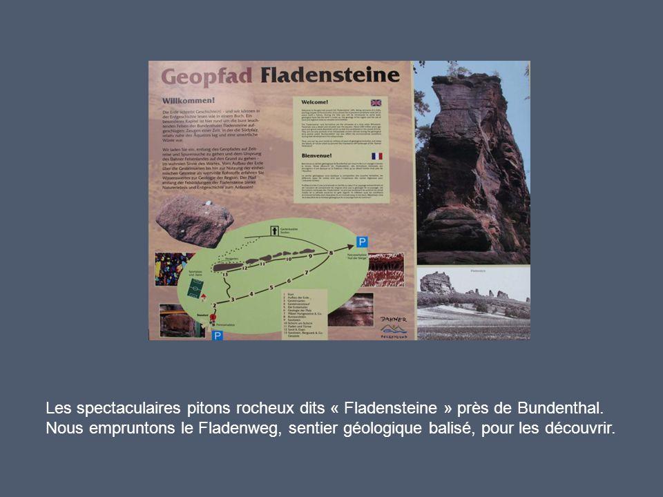 Explications passionnantes de notre guide Jean-Claude Gall pour nous faire comprendre l'origine de ces formations à partir des observations