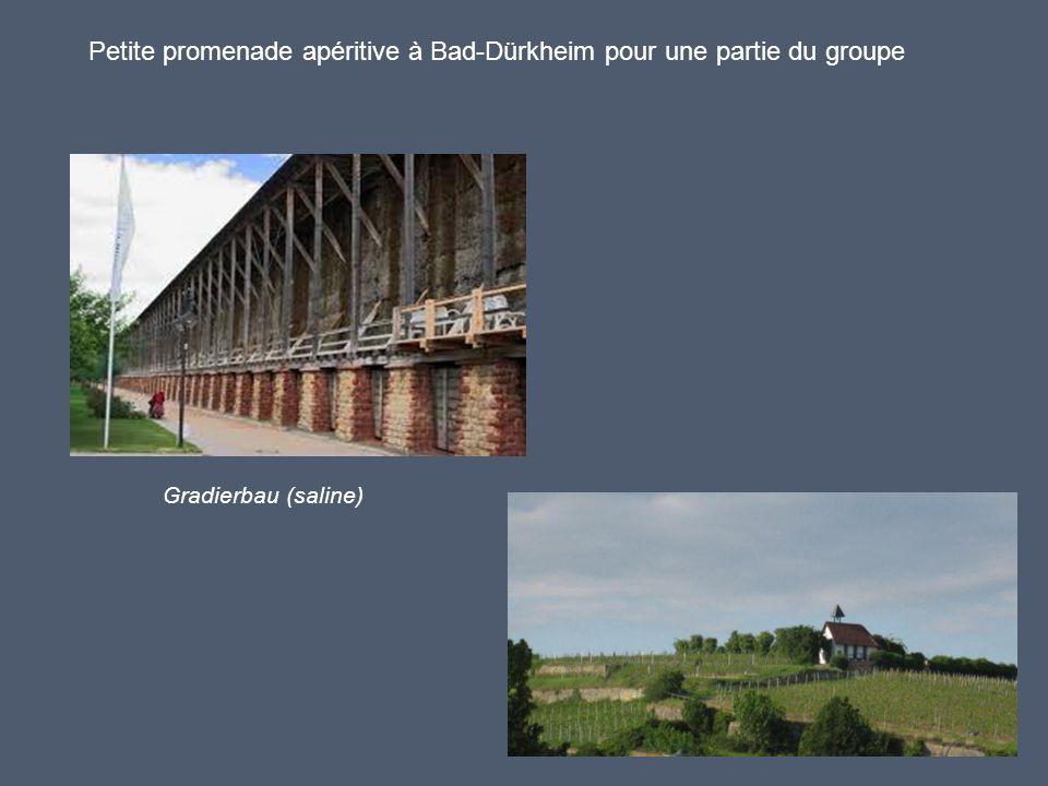 Petite promenade apéritive à Bad-Dürkheim pour une partie du groupe Gradierbau (saline)