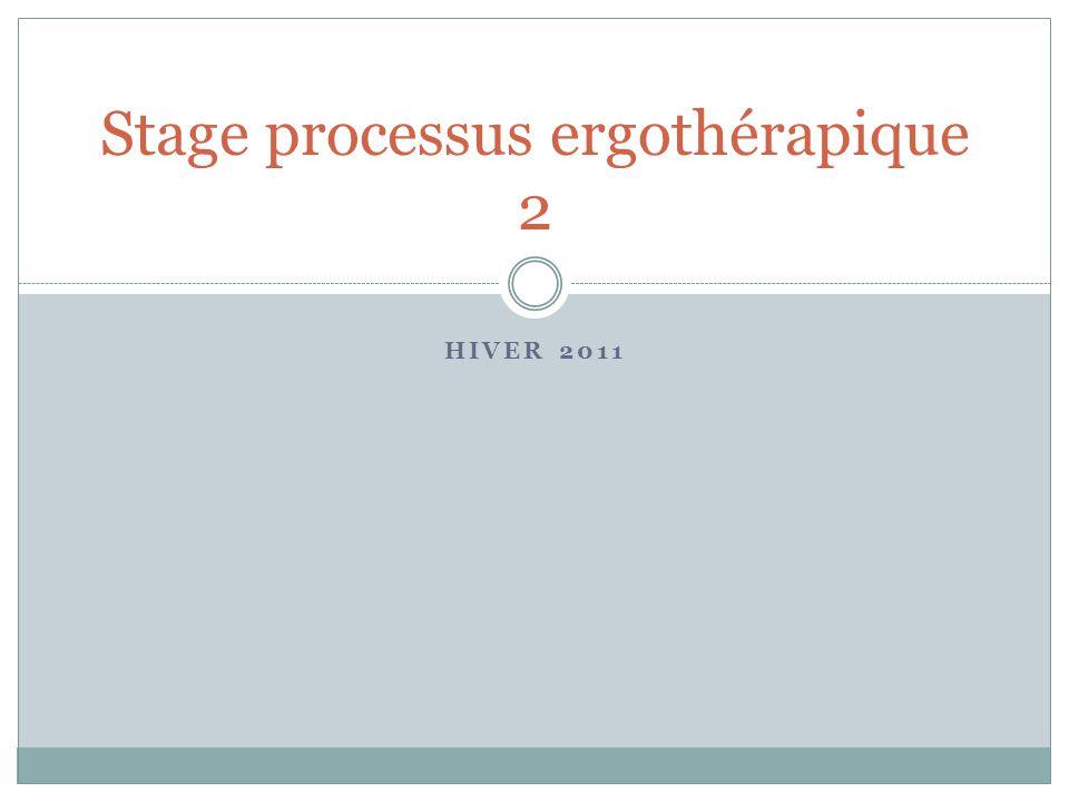 HIVER 2011 Stage processus ergothérapique 2