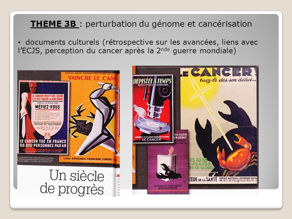 THEME 3B : perturbation du génome et cancérisation document scientifique (partir de leurs idées sur ce qu'est une cellule cancéreuse puis lecture de ce schéma) Science&Vie, juin 2010