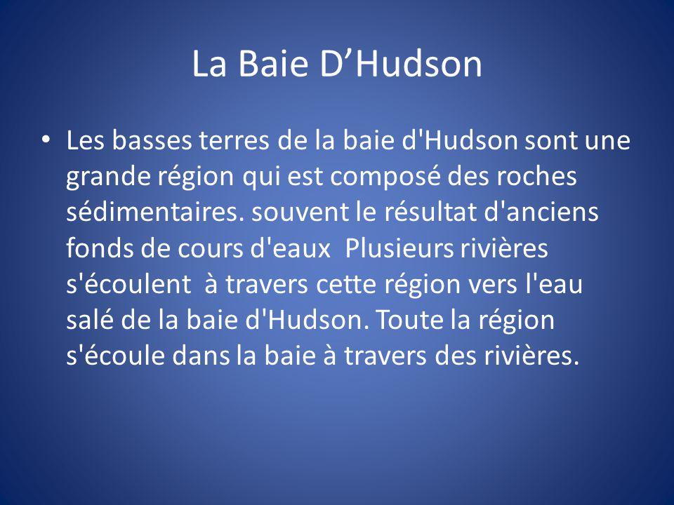 La Baie D'Hudson Les basses terres de la baie d'Hudson sont une grande région qui est composé des roches sédimentaires. souvent le résultat d'anciens