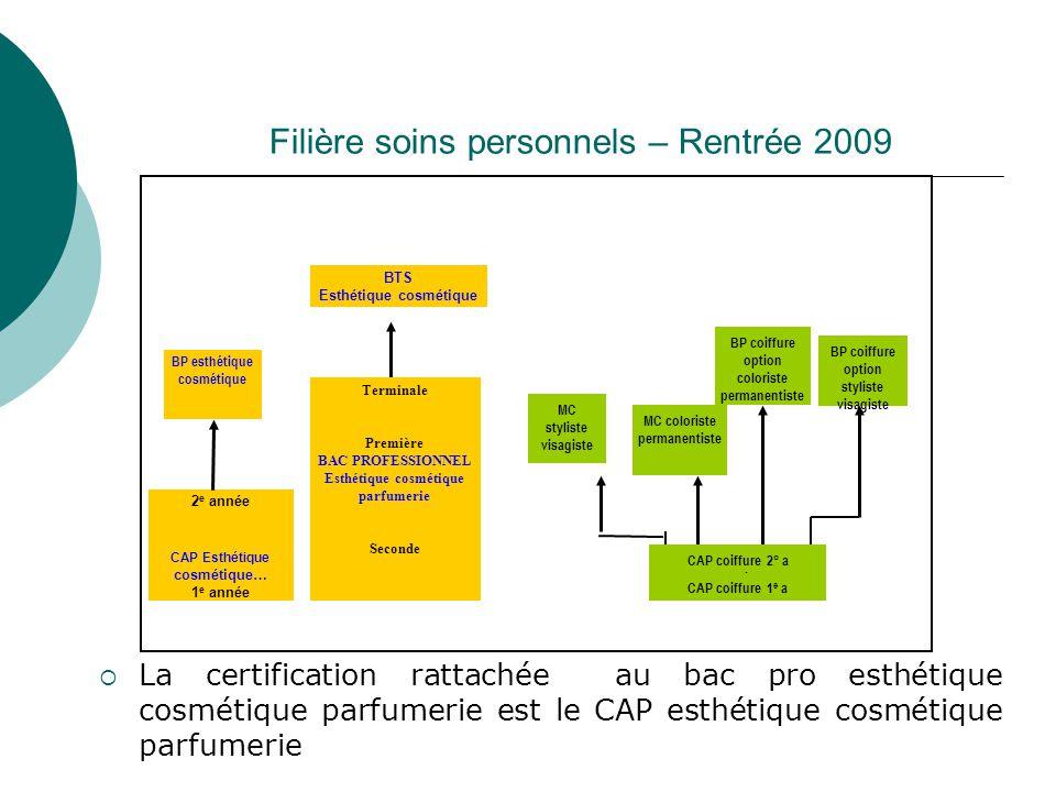 Filière soins personnels – Rentrée 2009  La certification rattachée au bac pro esthétique cosmétique parfumerie est le CAP esthétique cosmétique parf