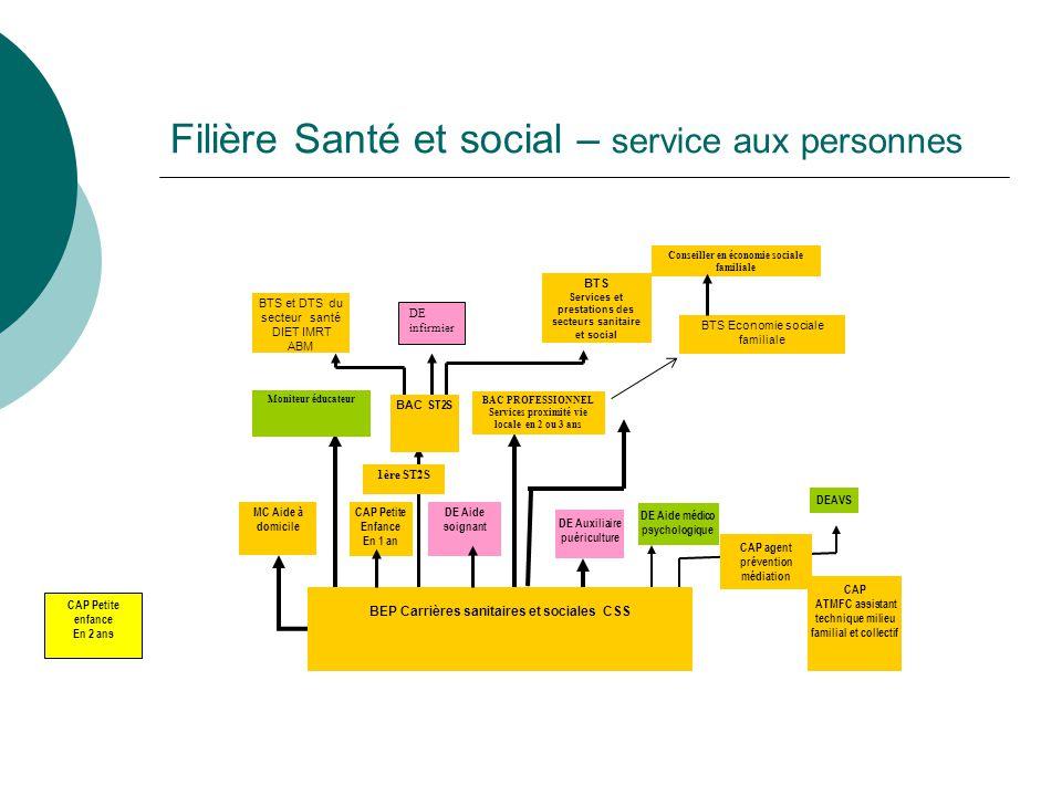 Filière Santé et social – service aux personnes DE Auxiliaire puériculture 1ère ST2S Conseiller en économie sociale familiale CAP Petite Enfance En 1