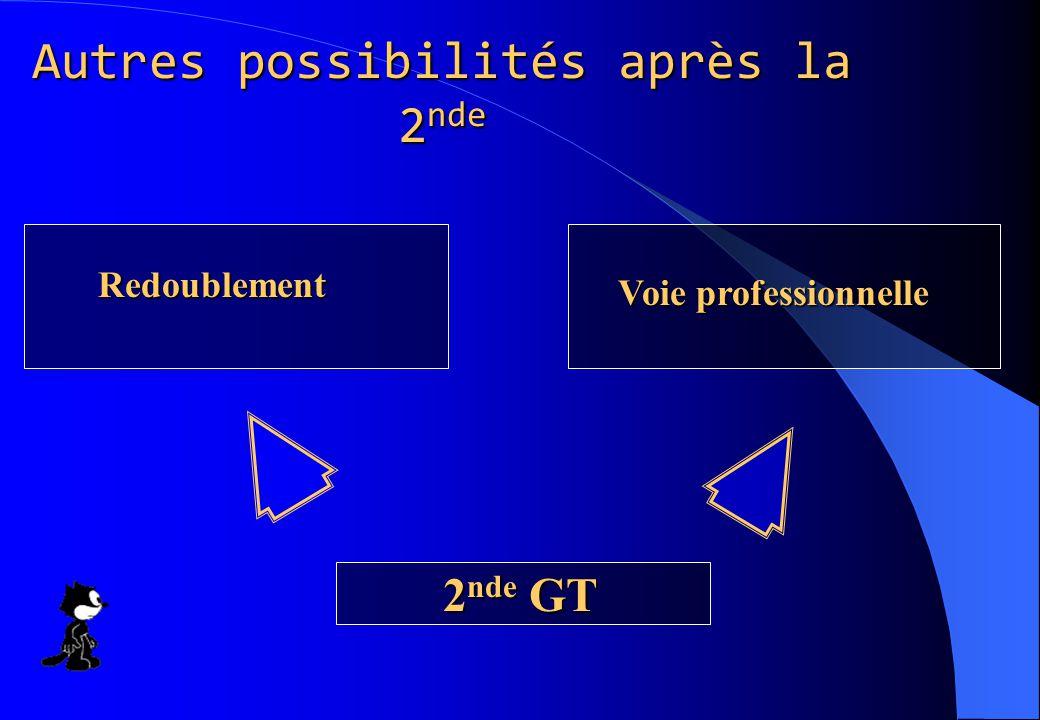 Autres possibilités après la 2 nde 2 nde GT Redoublement Voie professionnelle