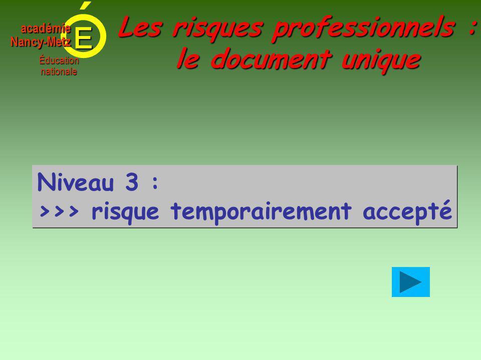 E Éducationnationale académieNancy-Metz Les risques professionnels : le document unique Niveau 3 : >>> risque temporairement accepté Niveau 3 : >>> risque temporairement accepté
