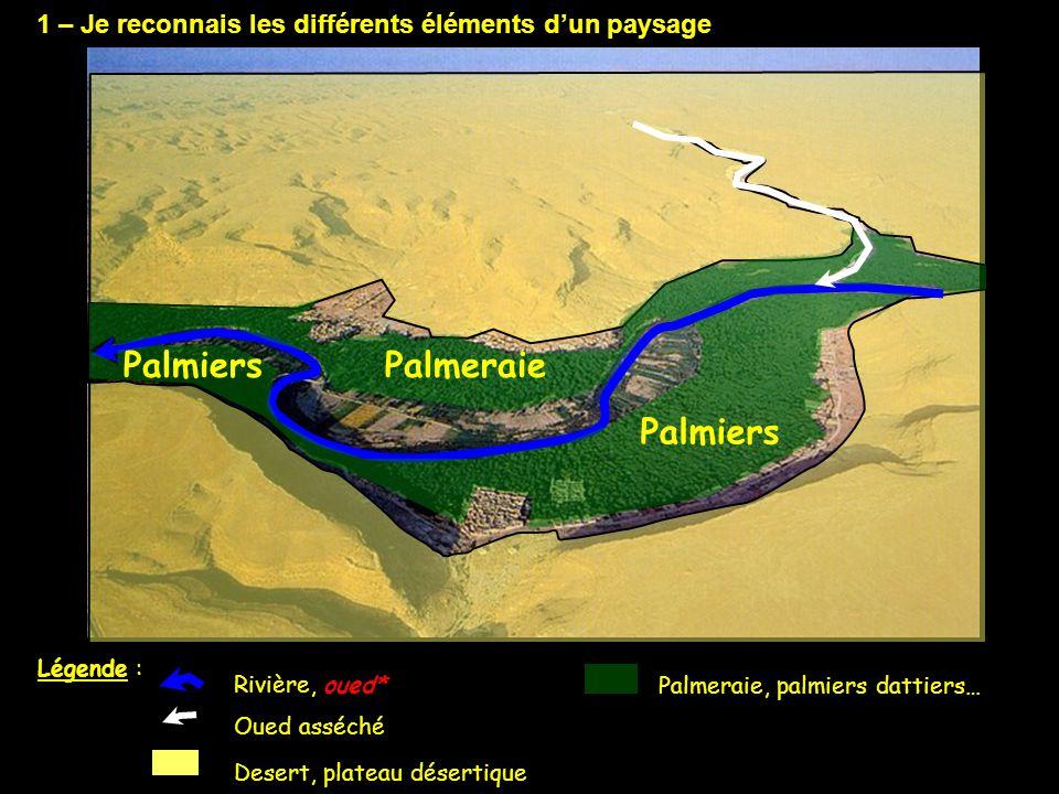 1 – Je reconnais les différents éléments d'un paysage Rivière, oued* Palmeraie, palmiers dattiers… Desert, plateau désertique Oued asséché Légende : P