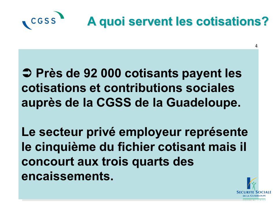  Près de 92 000 cotisants payent les cotisations et contributions sociales auprès de la CGSS de la Guadeloupe. Le secteur privé employeur représente