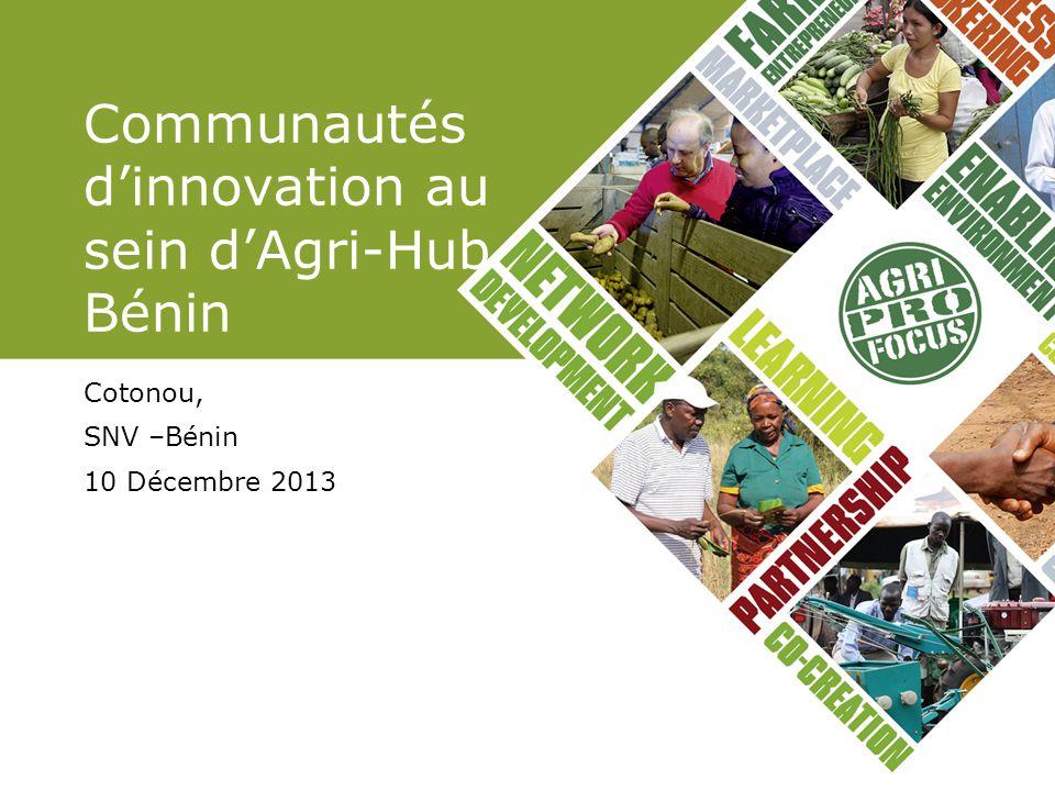Communautés d'innovation au sein d'Agri-Hub Bénin Cotonou, SNV –Bénin 10 Décembre 2013