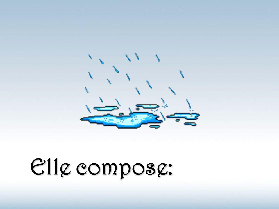 Nous sommes tous des créatures d'eau