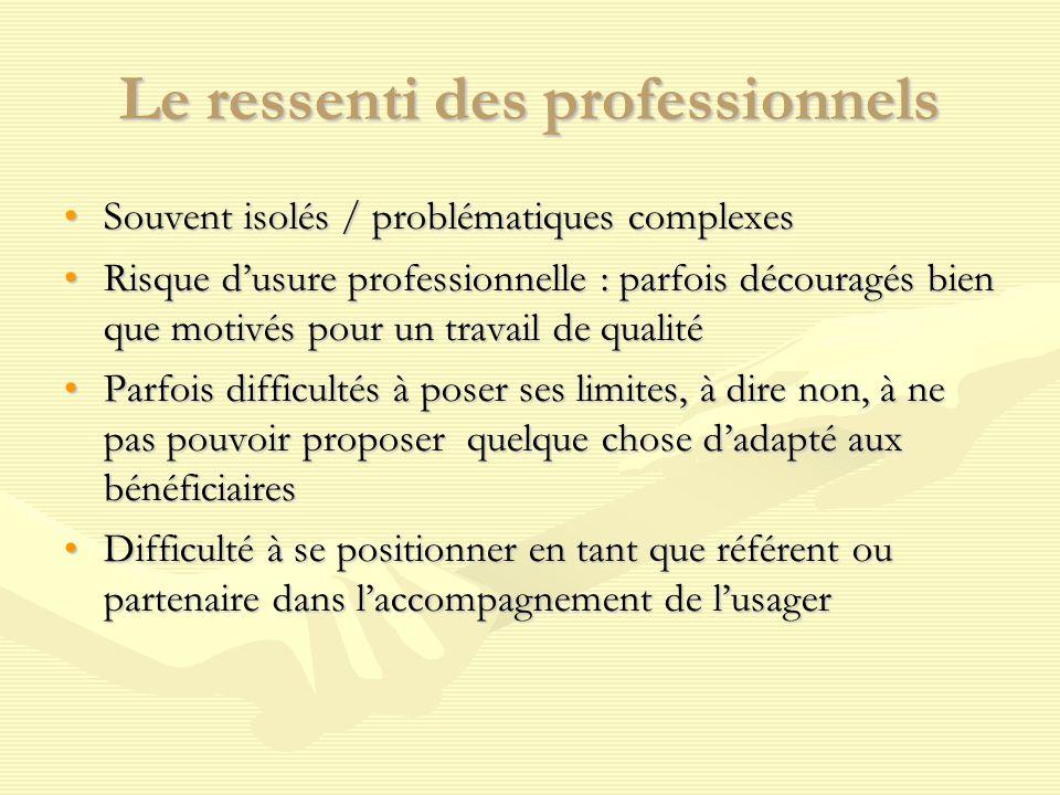 Le ressenti des professionnels Souvent isolés / problématiques complexesSouvent isolés / problématiques complexes Risque d'usure professionnelle : par