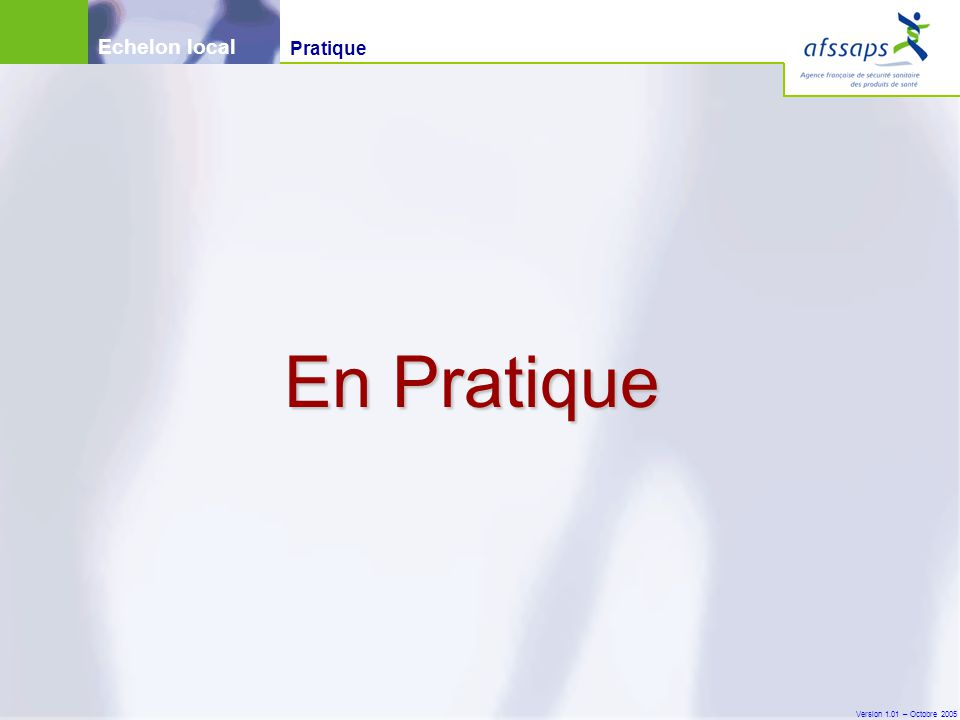 Version 1.01 – Octobre 2005 En Pratique Echelon local Pratique