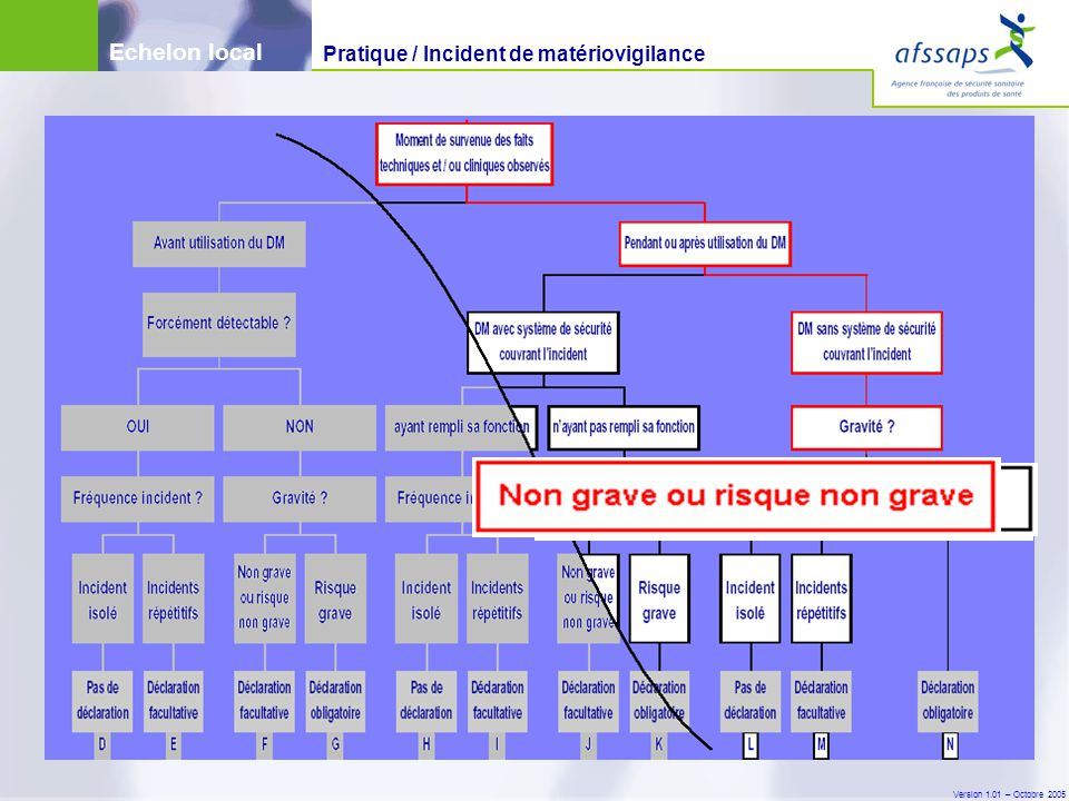 Version 1.01 – Octobre 2005 Echelon local Pratique / Incident de matériovigilance