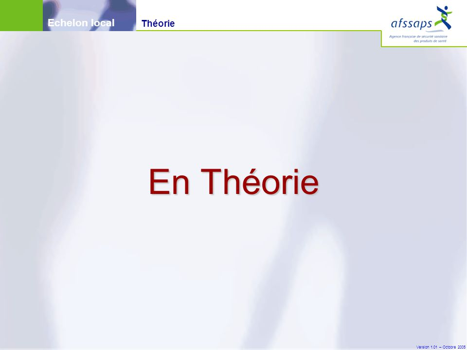 Version 1.01 – Octobre 2005 En Théorie Théorie Echelon local