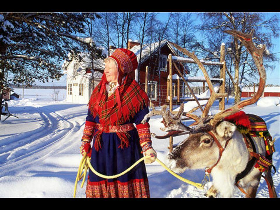 La Laponie compte de nombreux élevages de rennes, chaque animal peut peser jusqu'à 200 kilos. En 1986, l'accident nucléaire de Tchernobyl toucha de pl