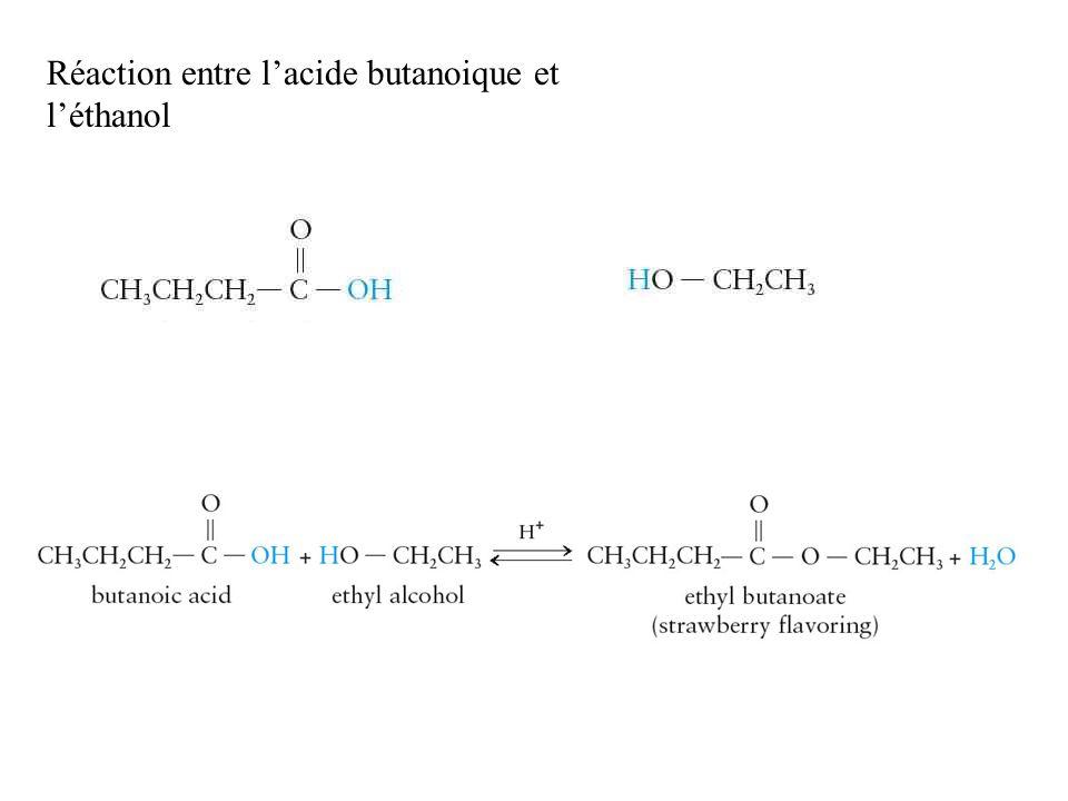 Réaction entre l'acide butanoique et l'éthanol