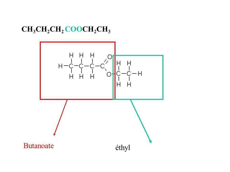 CH 3 CH 2 CH 2 COOCH 2 CH 3 Butanoate éthyl