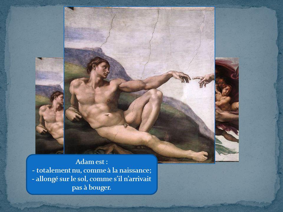 Adam est : - totalement nu, comme à la naissance; - allongé sur le sol, comme s'il n'arrivait pas à bouger.