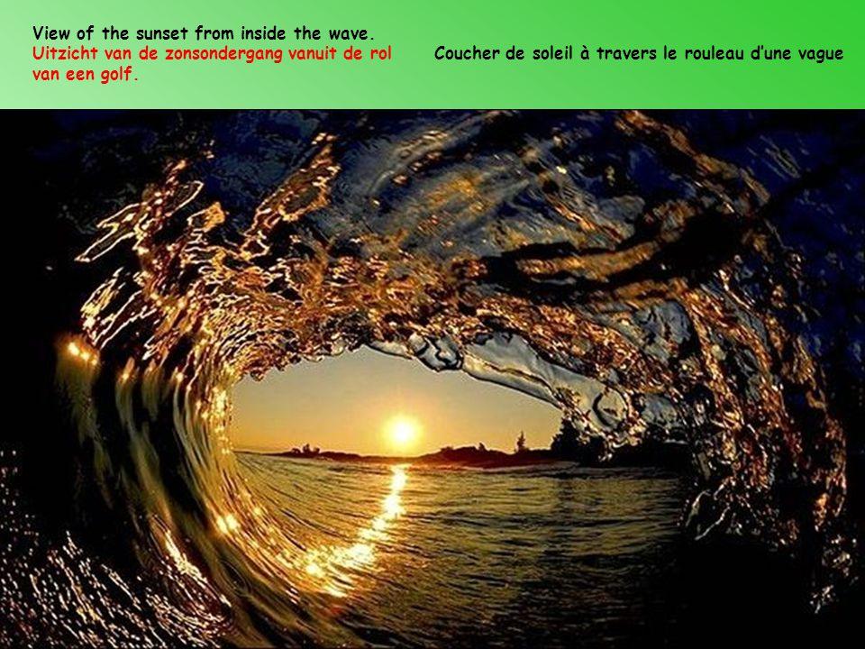 View of the sunset from inside the wave.Uitzicht van de zonsondergang vanuit de rol van een golf.