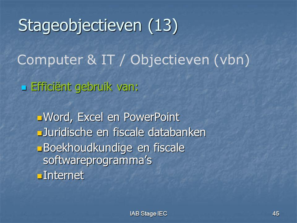 IAB Stage IEC45 Stageobjectieven (13)  Efficiënt gebruik van:  Word, Excel en PowerPoint  Juridische en fiscale databanken  Boekhoudkundige en fis