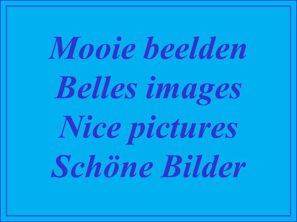 Mooie beelden Belles images Nice pictures Schöne Bilder