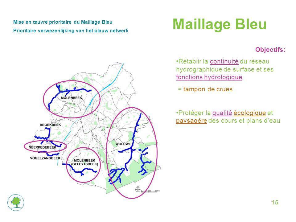 Maillage Bleu Objectifs: Rétablir la continuité du réseau hydrographique de surface et ses fonctions hydrologique = tampon de crues Protéger la qualité écologique et paysagère des cours et plans d'eau Mise en œuvre prioritaire du Maillage Bleu Prioritaire verwezenlijking van het blauw netwerk 15