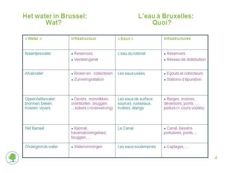 4 Het water in Brussel:L'eau à Bruxelles: Wat. Quoi.
